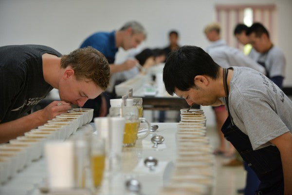 Group Cupping Beginner