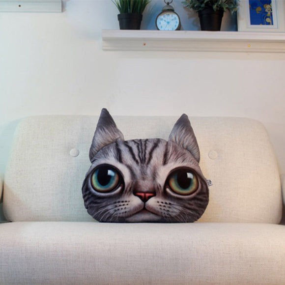Crazy Cat Cartoon Pillow