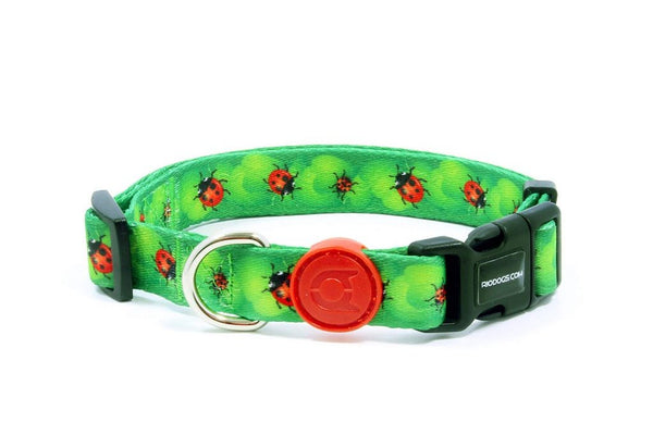 Dog Collar | Ladybug Design | Rio Dogs Store