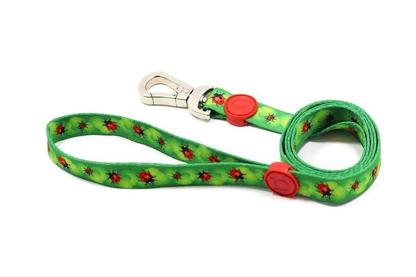 Dog Running Leash | Rio Dogs Store