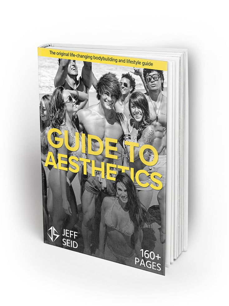 Guide to Aesthetics Hardcopy