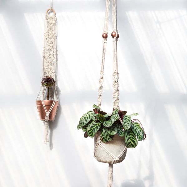 Macrame Plant Hanger - Macrame Macrame - Homeware Lekker Project - Sustainable LekkerProject - Lekker Project