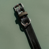 ACTIVE DOG COLLAR - BENJI + MOON