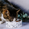 GALAXY CERAMIC PET BOWL