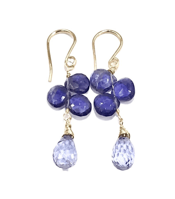 Blue Violet Gemstone Dangle Earrings 14 kt Gold Fill - doolittlejewelry