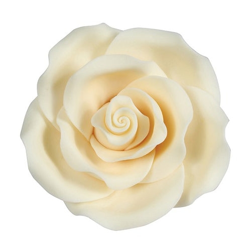 Sugar Rose Ivory  50 mm (10pcs)