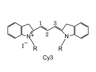 Cy3 Conjugated Lectins