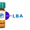 Phaseolus limensis Lectin (LBA) - Cy5