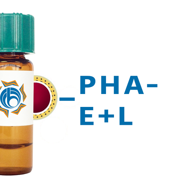 Phaseolus vulgaris Lectin (PHA-E+L) - Colloidal Gold