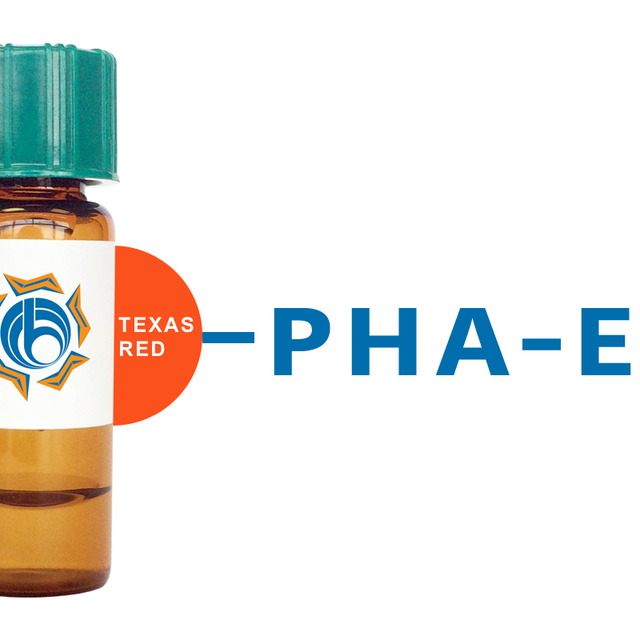 Phaseolus vulgaris Lectin (PHA-E) - Texas Red