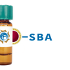 Glycine max Lectin (SBA) - Colloidal Gold