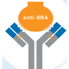 Anti-SBA Lectin Antibody (Rabbit Polyclonal IgG)