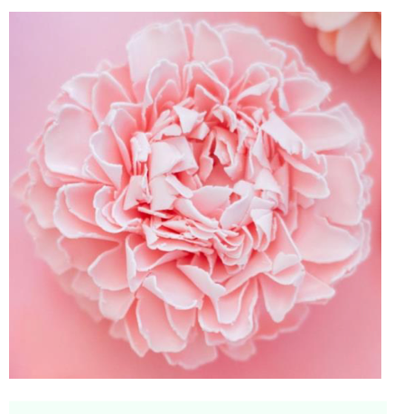 Pink Frills Soap Flower