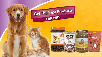 Get Nothing but the Best for your Pet