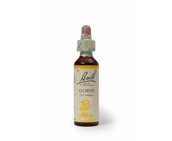 Bach Gorse Remedy[20ml]