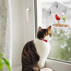 BirdzFeed Window Bird Feeder Cat Two Parrots Food Plexiglass