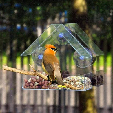 BirdzFeed Window Bird Feeder Parrot Food Plexiglass