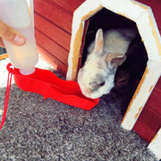 Pets Water Dispenser Rabbits Drinking