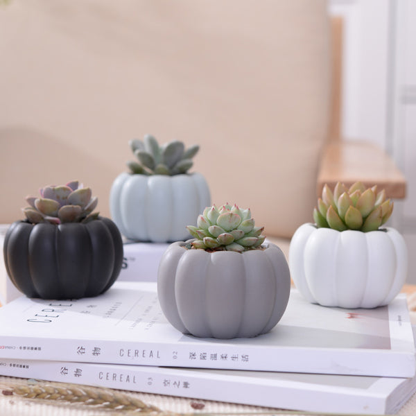Pumpkin Shape Ceramic Planters Set - 4pcs Matt Porcelain Flowerpot Mini Succulent Plant Pots Desktop Flower Pot Bonsai Planters