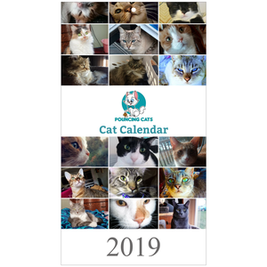 Pouncing Cats Cat Calendar