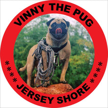 Jersey Shore Coffee 2-Mug Set & Surprise Gift - Vinny The Pug
