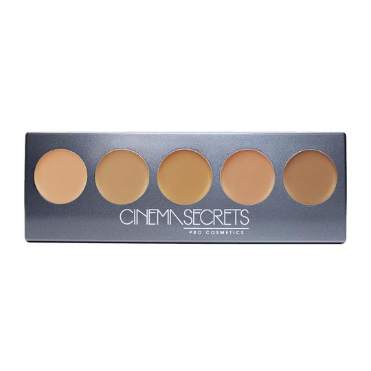 ULTIMATE FOUNDATION 5-IN-1 PRO PALETTE -300 SERIES