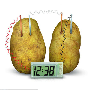 Educational DIY Experiment for children kids Potato Clock - Electrochemistry