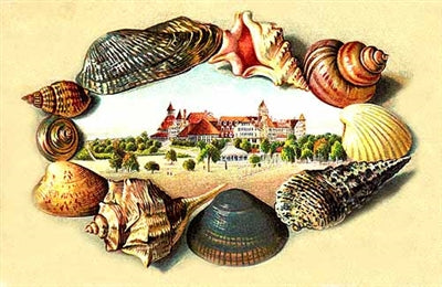 C1006 - Hotel del Coronado with shell border