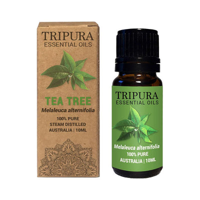 Tea Tree Essential Oil - 10ml - Tripura Essential Oils