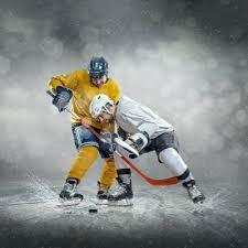 Hockey Player Scouting Evaluation Service