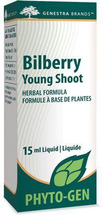 Bilberry Young Shoot - Holistic United