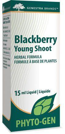 Blackberry Young Shoot - Holistic United