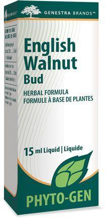 English Walnut Bud - Holistic United