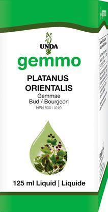 Platanus orientalis 125 ml - Holistic United