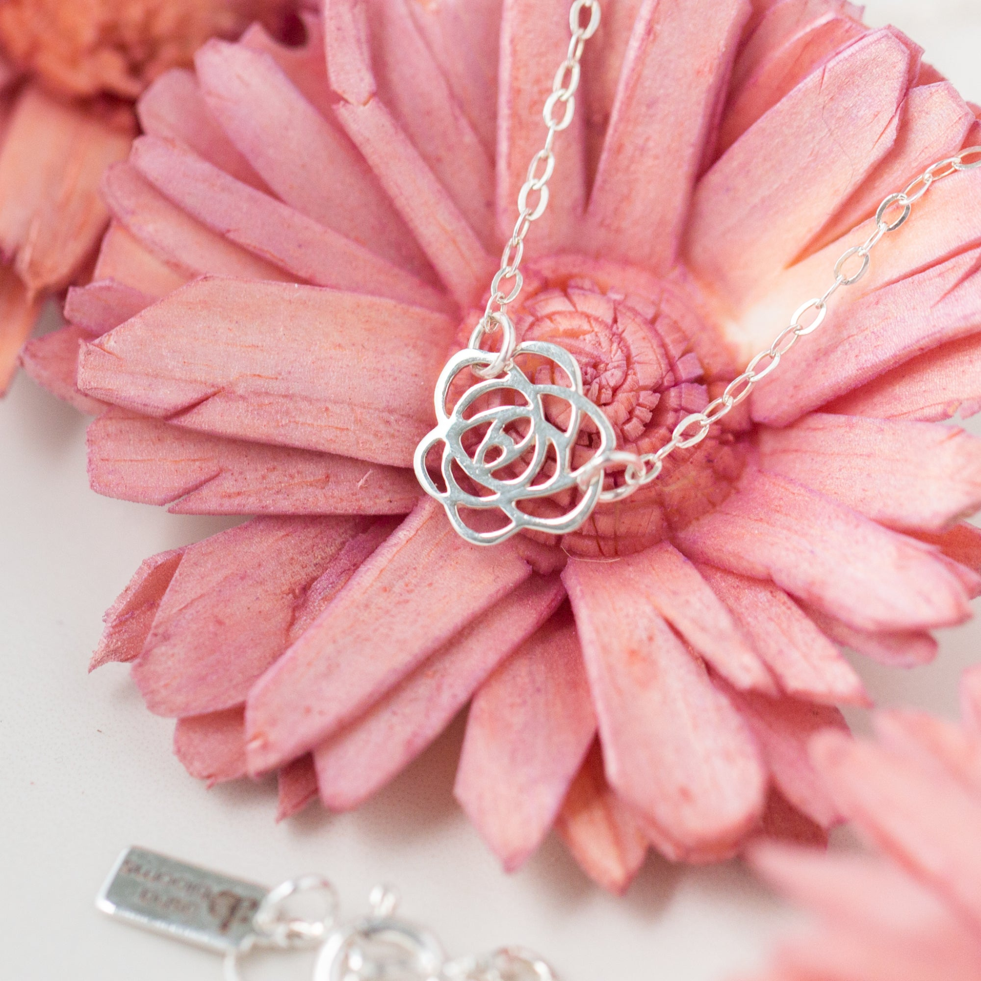 Close-up of Silver Rose Pendant Necklace 'Thank You' Flat Lay on Pink Flower Photo by Asha Blooms