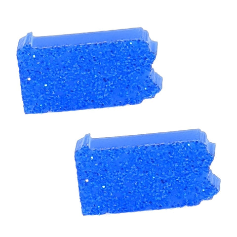 Pennsylvania Earrings (Studs) - blue glitter