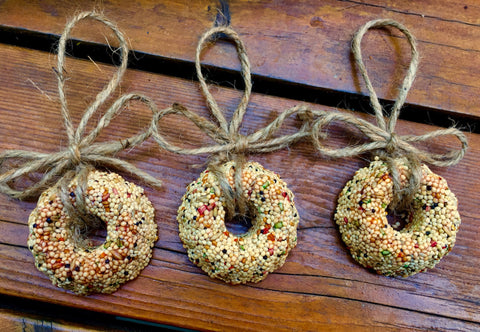 Christmas Birdseed Wreath Ornament Gift Box| 6 Hanging Bird Feeders + Personalized Card