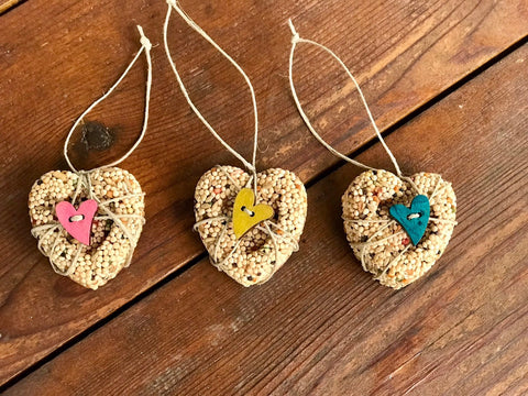 Valentines Day Heart Birdseed Ornament Gift Box (A) | 3 Hanging Bird Feeder + Personalized Card
