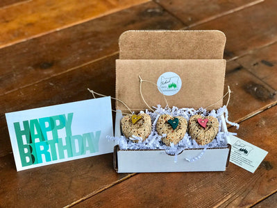 Birthday Birdseed Wreath Ornament Gift Box | 3 Hanging Bird Feeders + Personalized Card