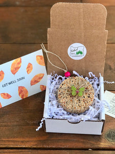 Get Well Soon Birdseed Ornament Gift Box (B) | 1 Hanging Bird Feeder + Personalized Card