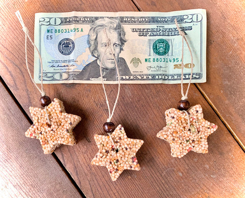 Hanukkah Star of David Birdseed Ornament Gift Box (B) | 2 Hanging Bird Feeders + Personalized Card