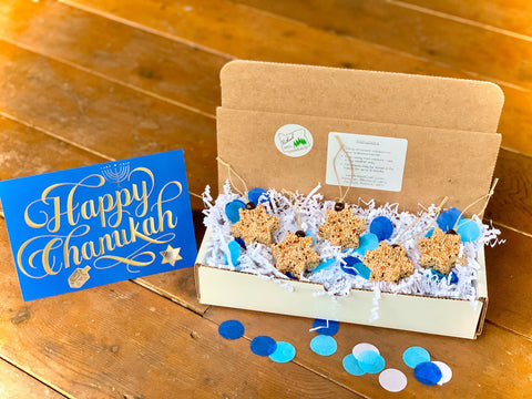 Hanukkah Star of David Birdseed Ornament Gift Box (A) | 2 Hanging Bird Feeders + Personalized Card