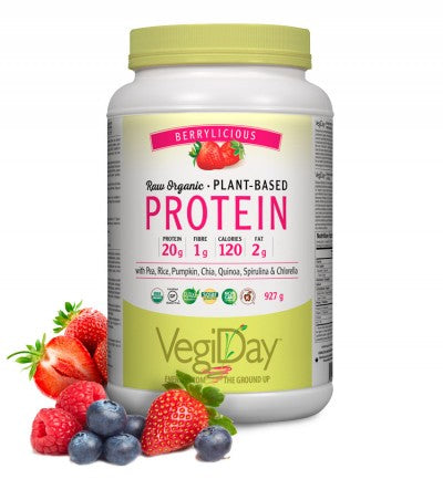 VegiDay Proteins, Raw Organic Plant Based Protein, Berry, 741g