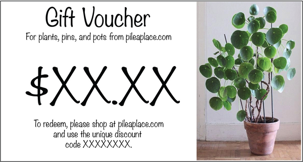 Pilea Place Gift Card