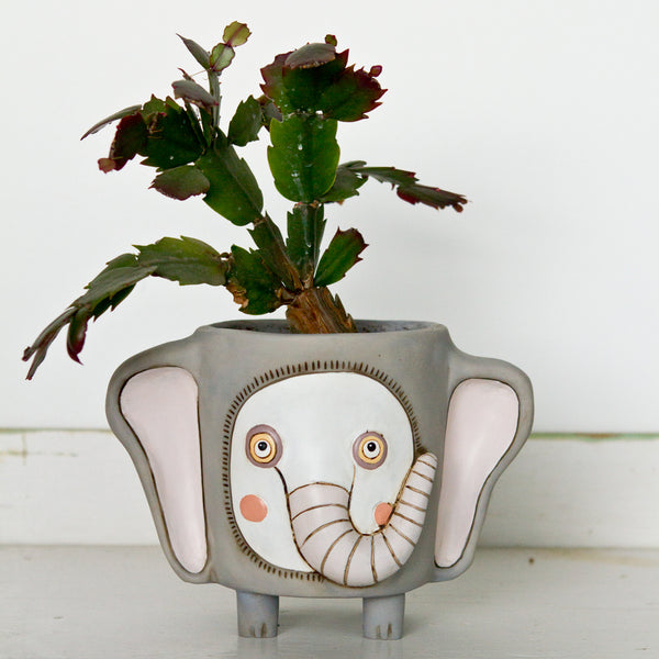 Elephant Pot [product-vendor]- Pilea Place House Plant Store Melbourne Sydney Australia Canberra Brisbane Victoria New South Wales