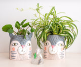 Cat Pot [product-vendor]- Pilea Place House Plant Store Melbourne Sydney Australia Canberra Brisbane Victoria New South Wales