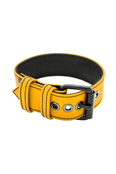 "1.5"" yellow leather armband belt with matt black buckle"