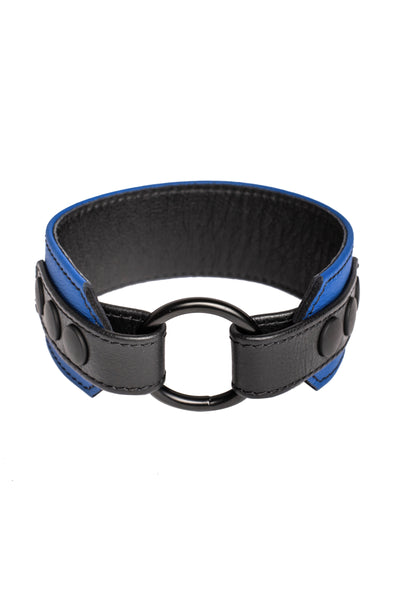 A blue leather armband with black metal O-ring
