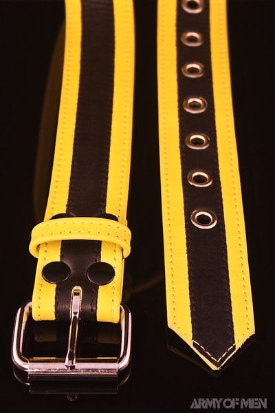 SERGEANT RACER STRIPE BELT - Colour