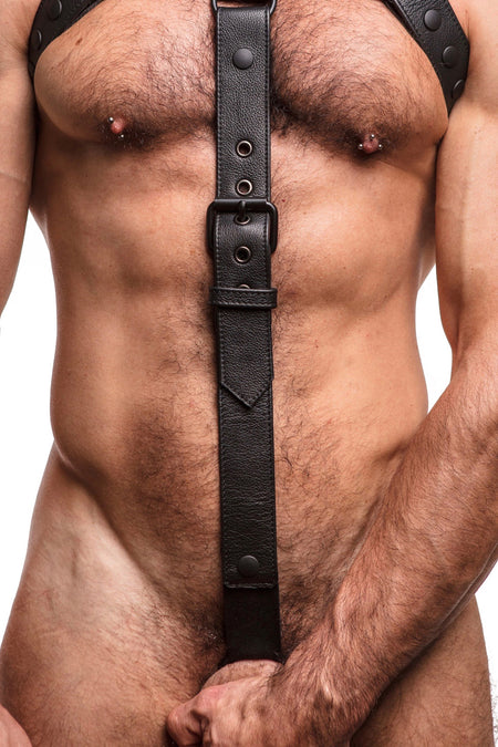 BULLDOG HARNESS - Black